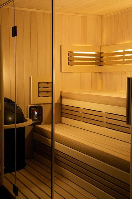 helo reflections infrared sauna diamond sauna steam. Black Bedroom Furniture Sets. Home Design Ideas
